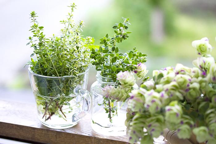 夏美人,レシピ,ヘルスケア,抗酸化,夏野菜,疲労回復,インナービューティ