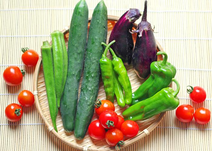 五感,夏, 涼,愉しみ,涼感,のどごし,旬野菜,器選び