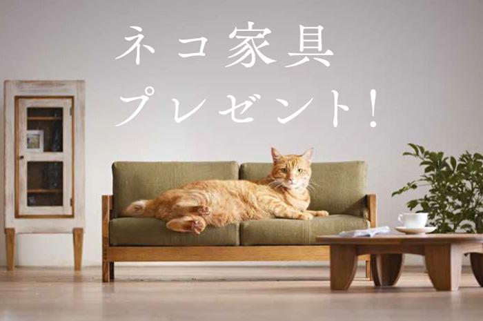 大川,木工まつりネコ家具,プレゼント,SNS,10名様