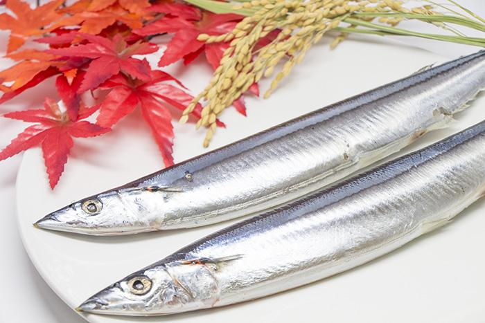 健康,美容,秋の味覚,青魚,サンマ,イワシ,サバ,EPA,DHA,刺身,煮付