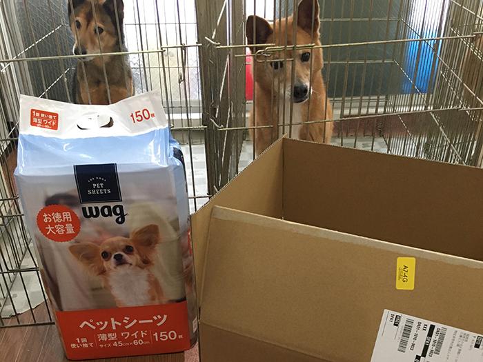 マザー,ルーフ,福岡,保護犬,保護猫,アマゾン,ほしいもの,リスト,寄付,支援,お願い