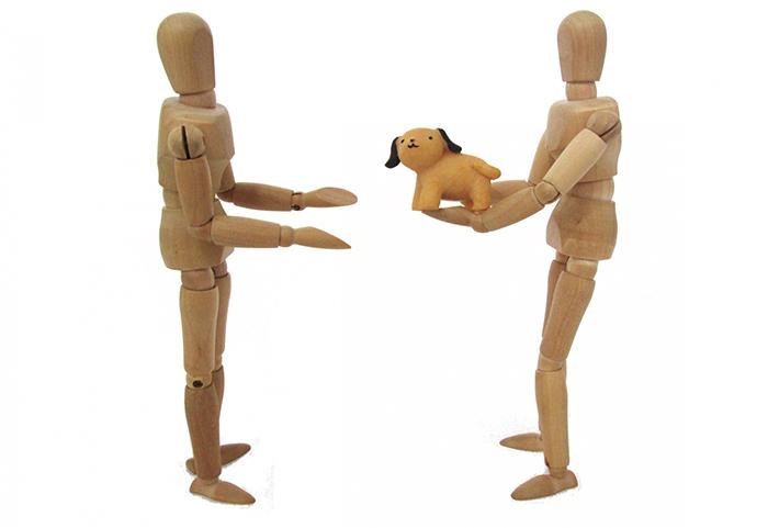 エッセイ,編集長,徒然,保護活動,ボランティア,システム,保護猫,保護犬