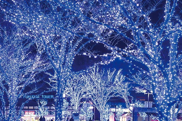 お出かけ,イベント,クリスマス,イルミネーション,百道,福岡タワー