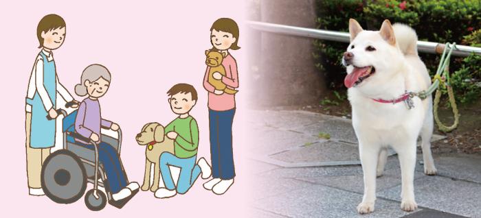 マザー,ルーフ,セラピー,ドッグ,訓練,福岡