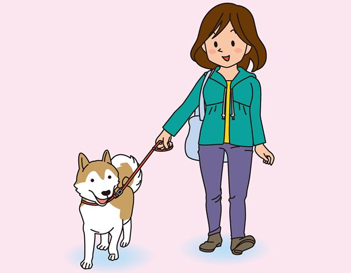 記者コラム,ボランティア,マザー,ルーフ,お散歩,犬,猫