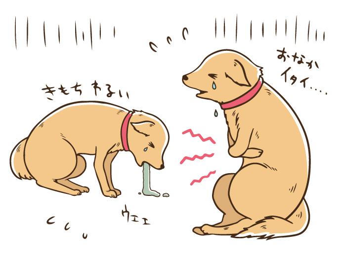マザー,ルーフ,福岡,下痢,保護犬,保護猫,消毒,原因,不明