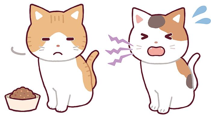 マザー,ルーフ,福岡,保護猫,外猫,口内炎,歯肉炎
