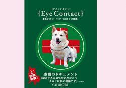 アイコンタクト 〜名犬チロリ写真集〜プレゼント