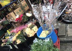 意外!!八百屋さんのお花が安くて新鮮です!