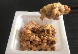 1日1パックの納豆で腸内環境が整ってきた!?
