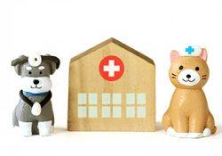 動物を飼うには医療費が絶対に必要です!